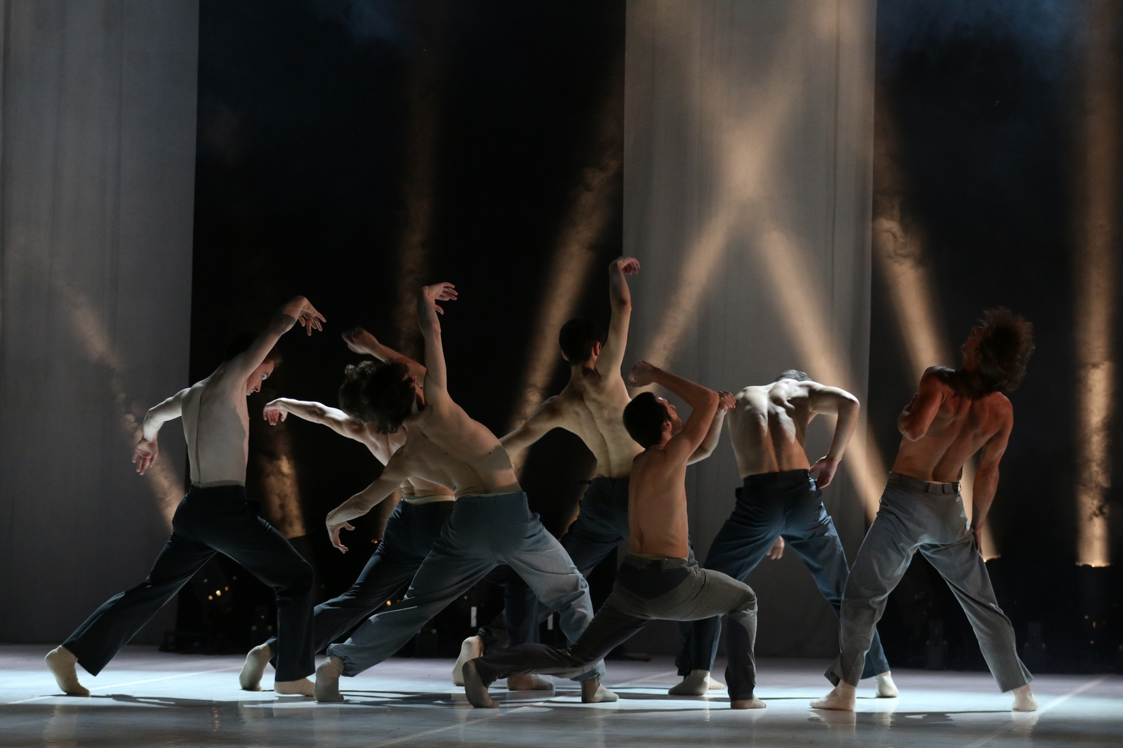 upoznavanje muških baletnih plesača